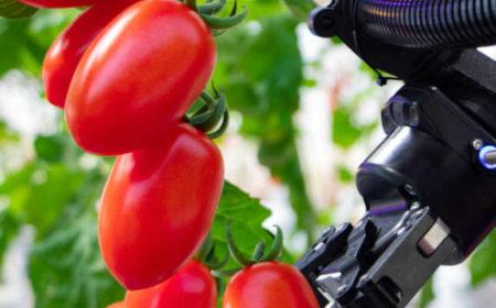 World Food Innovate Summit Series – Food Focused Investments