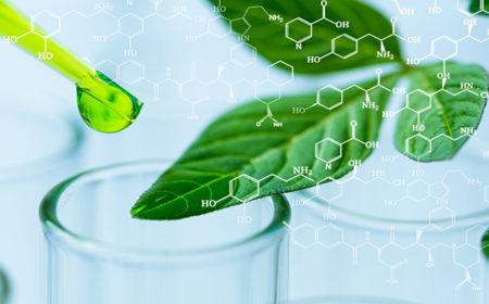 Go Green – Growing Green ChemisTREE