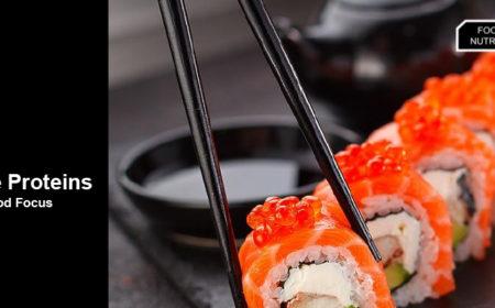 Alternative Proteins – Alternative Seafood Focus
