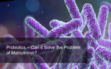 Probiotics – Can it solve the problem of malnutrition?