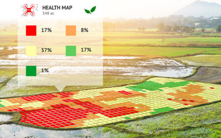Geo-monitoring Tools to Improve Nutrition