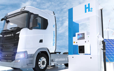 Green Hydrogen Economy: Challenges and Opportunities